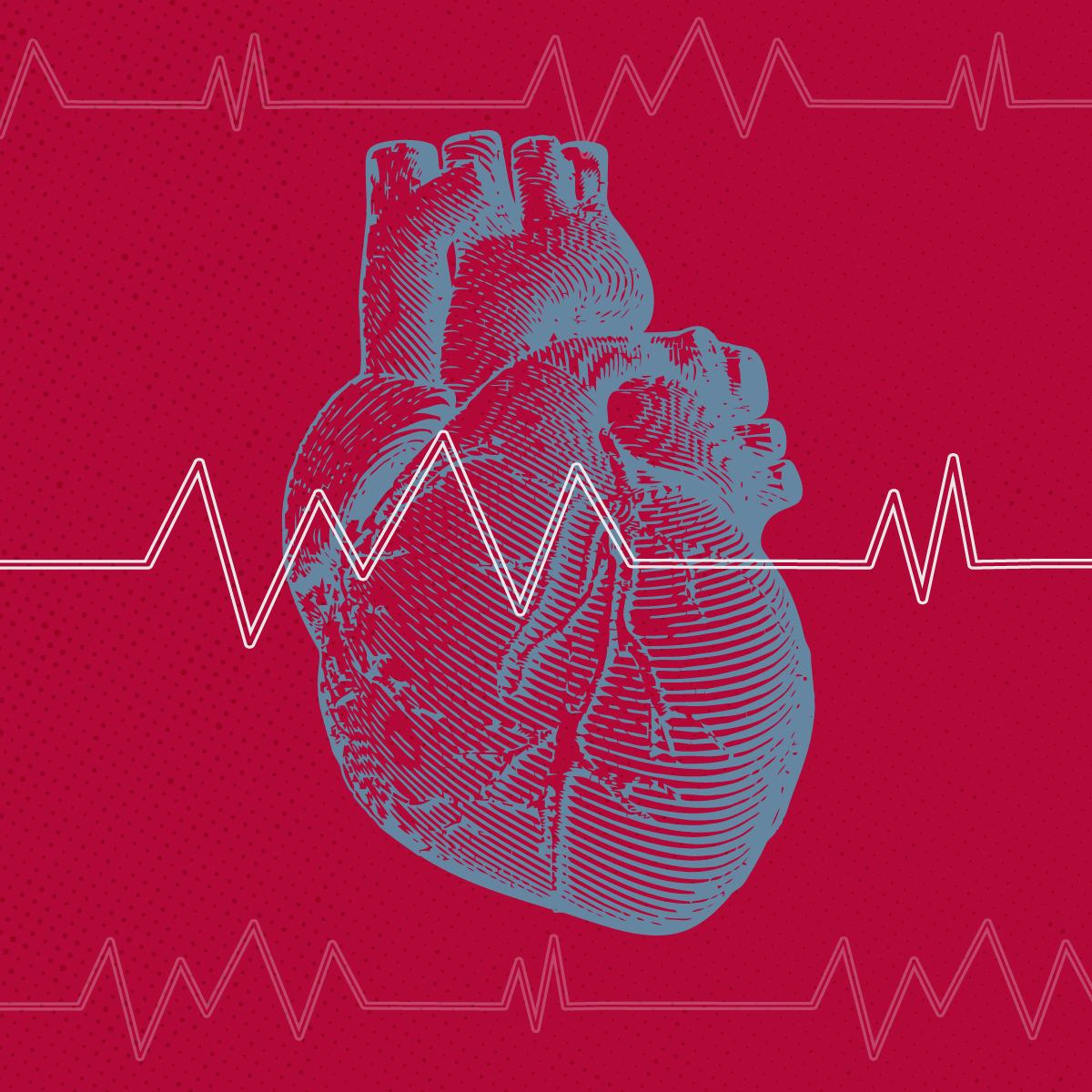 What Is Heart Disease? Cardiovascular Health Problems Explained Square