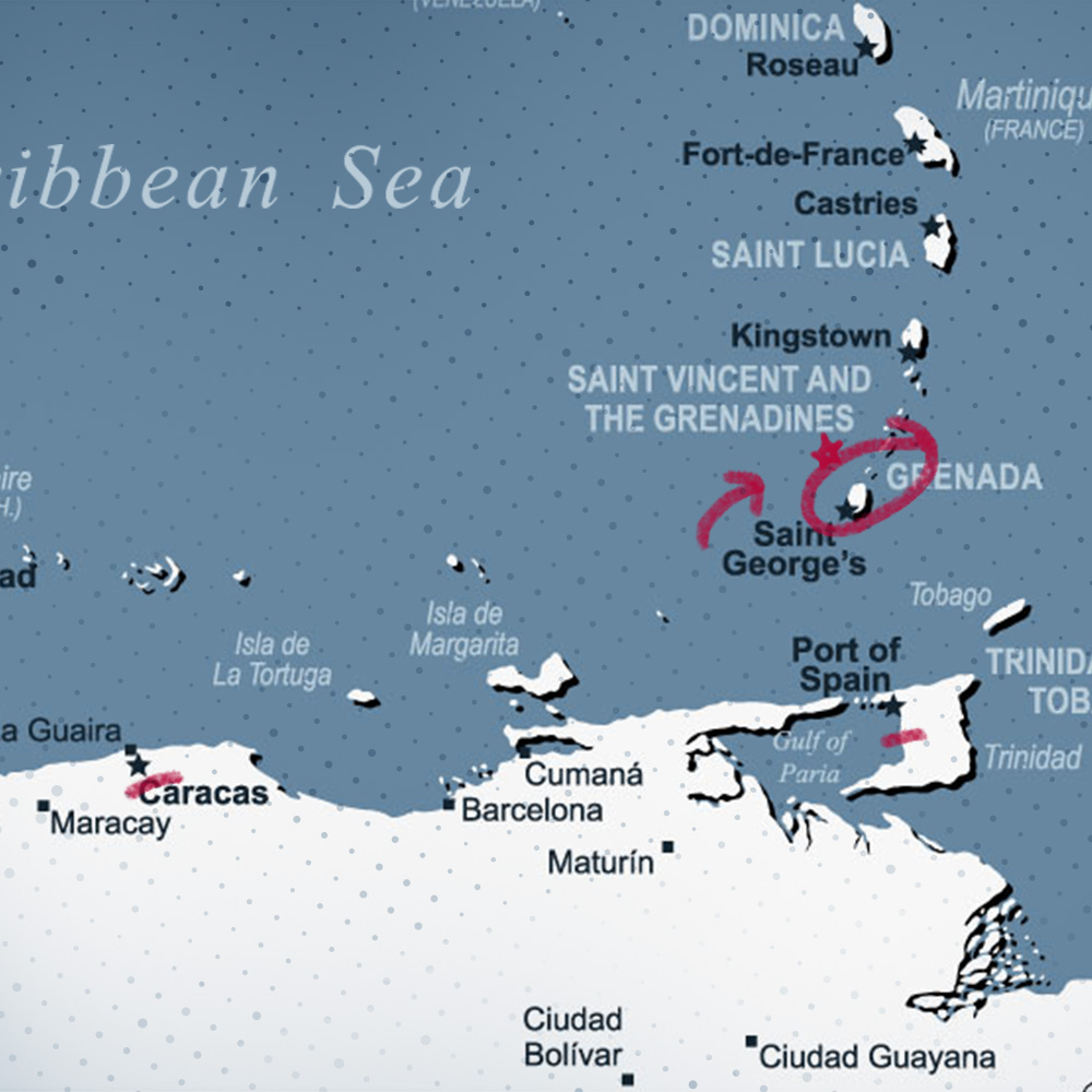 How to Find the Best Medical Schools in the Caribbean Square