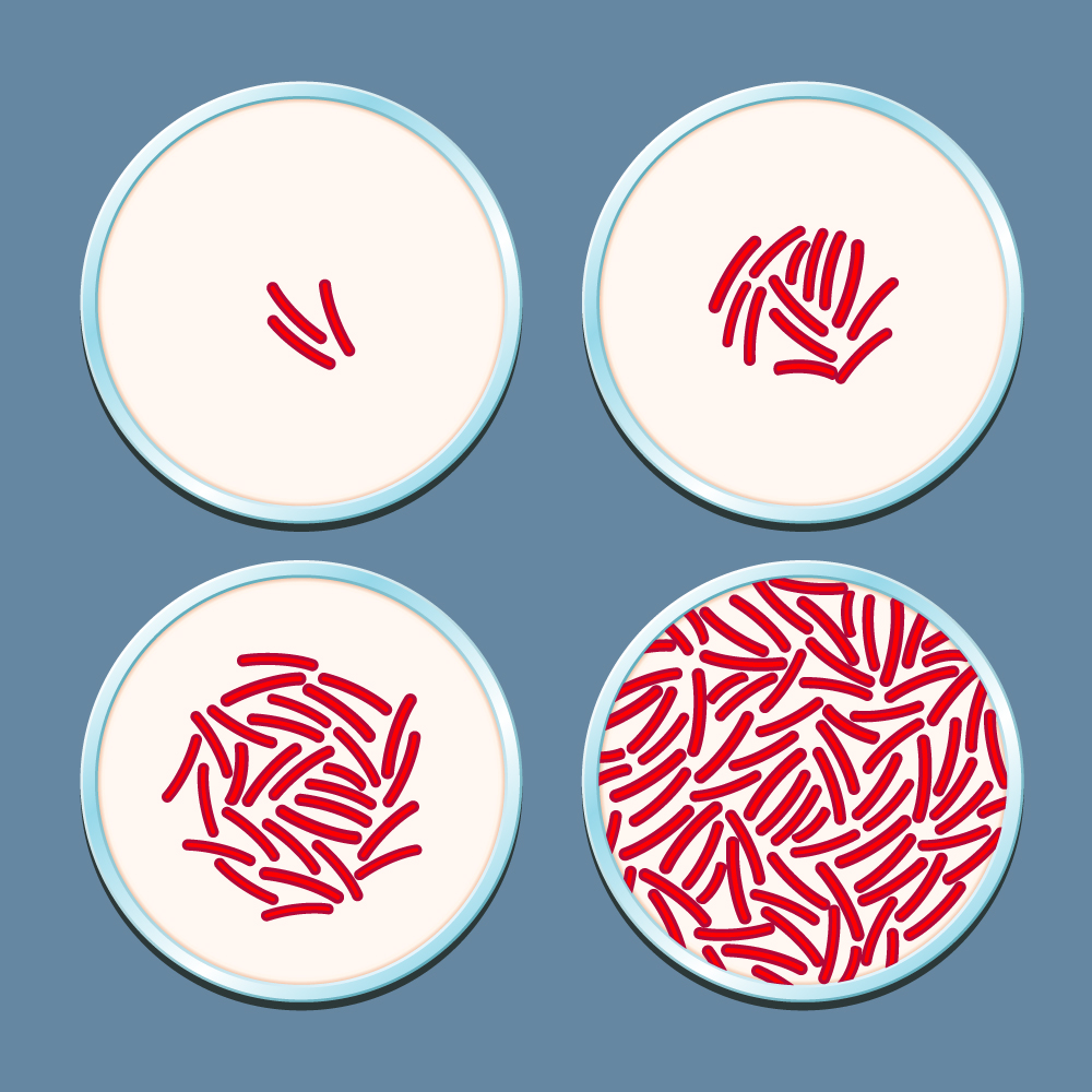 What Is Antibiotic Resistance? A Look at This International Health Problem Square