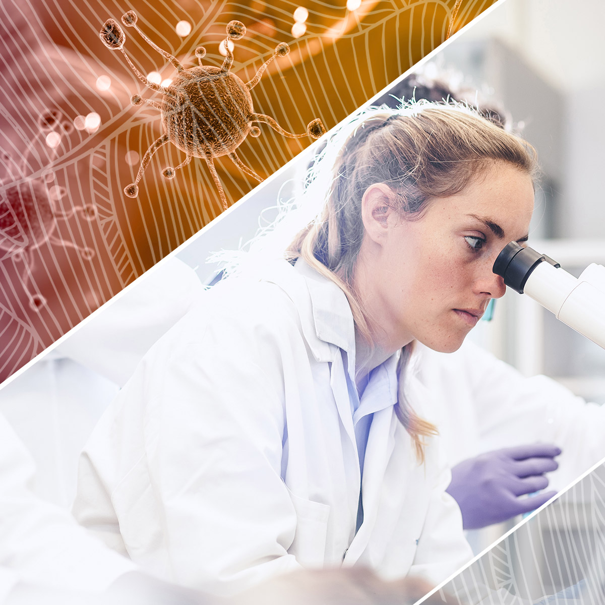 What Does a Pathologist Do? A Look Inside Life as a Disease Expert_feature