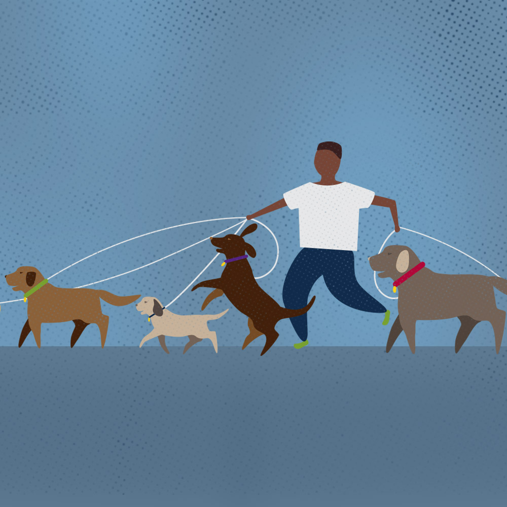 Pros Expose What It's Really Like Working with Animals Square